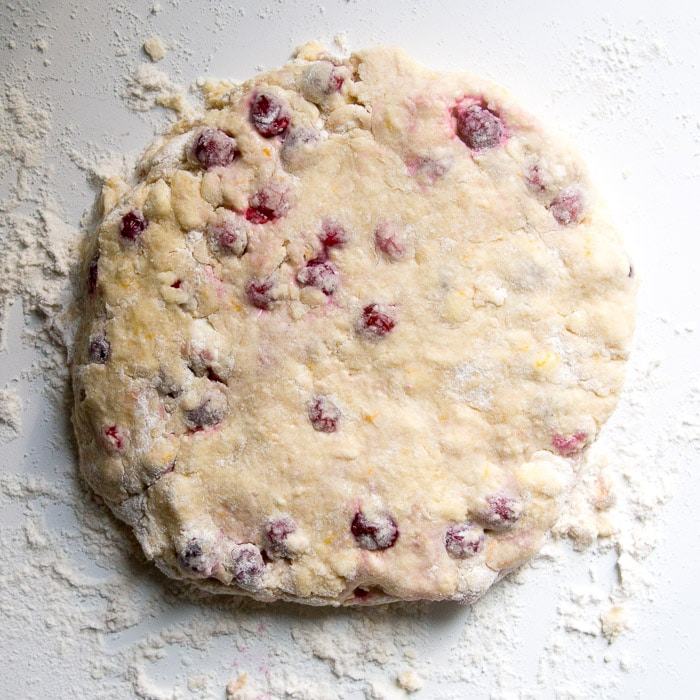 Cranberry orange scone dough patted out into a thick round disc