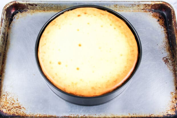 Cheesecake after it is baked and still in the pan