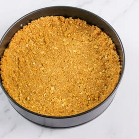 Graham cracker crust pressed into sprig form pan and ready to bake