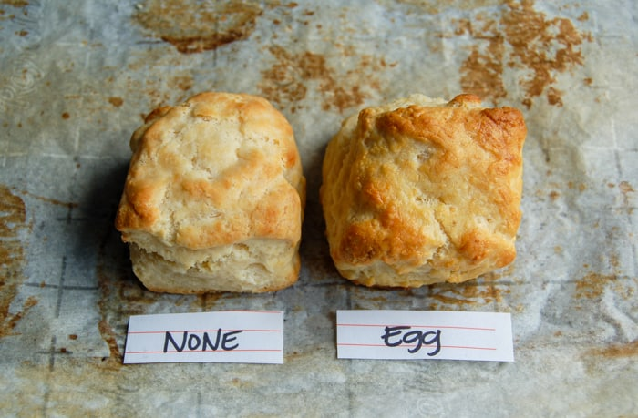 Closeup of biscuits: one brushed with nothing, one brushed with an egg wash.