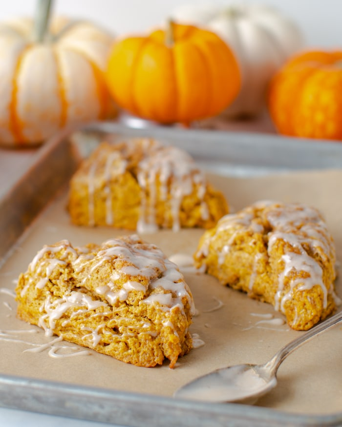 sheet pan with pumpkin scones with cinnamon glaze drizzled on top and pumpkins in the background