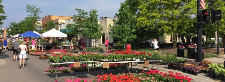 Northville Flower Sale