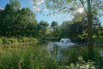 Picturesque Pond