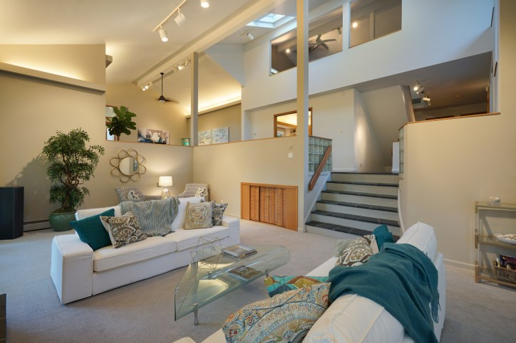 Dramatic Open Plan Home
