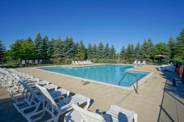 freestone pool-50