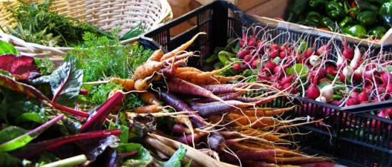 High Bionutrient Crop Production Course