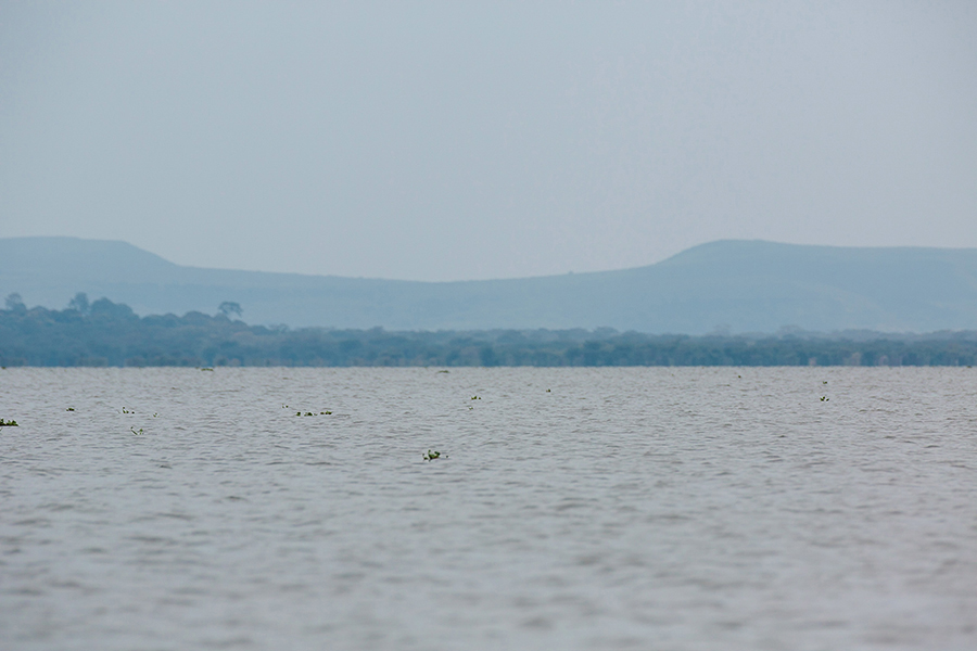 Naivasha-10-2 Lake Naivasha Water Safari Photography Travel
