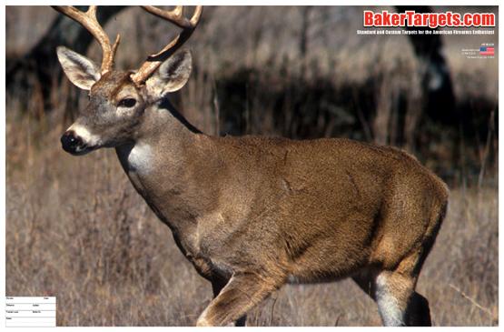 full color buck target