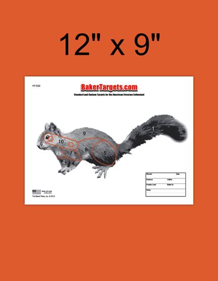 squirrel 2 target