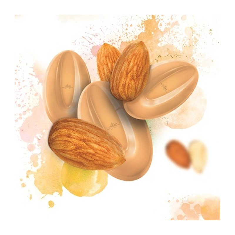 almond-inspiration-nuts-couverture-beans-3-kg