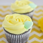 Buttercream Rose Cupcake (Video Tutorial)