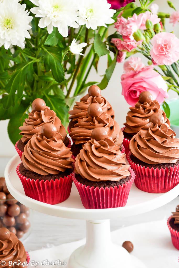 Hot Chocolate Malt Cupcakes