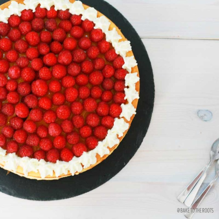 Raspberry Apricot Cheesecake with Chocolate Crusts | Bake to the roots