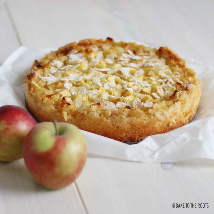 Grandma's Apple Cake | Bake to the roots