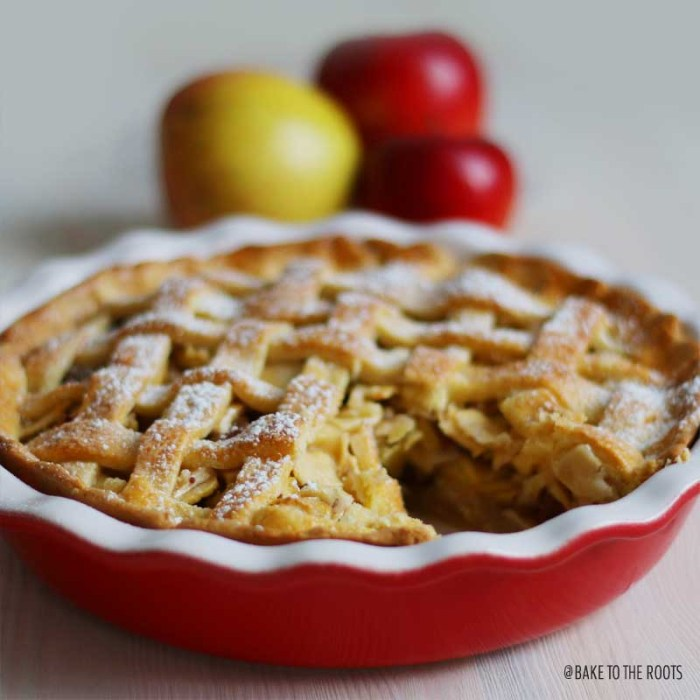 Oldfashioned Apple Pie | Bake to the roots