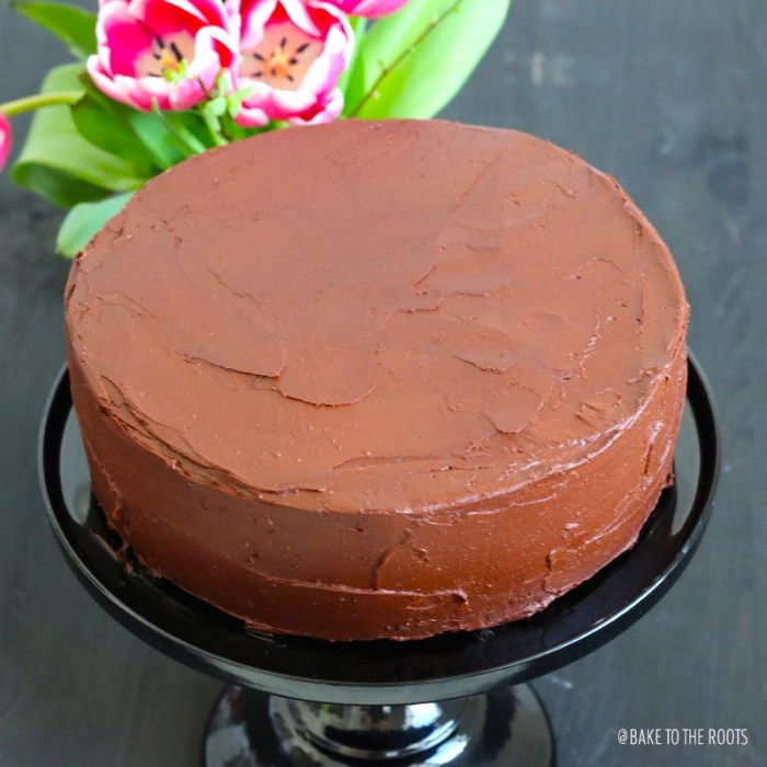 Chocolate Cake   Bake to the roots