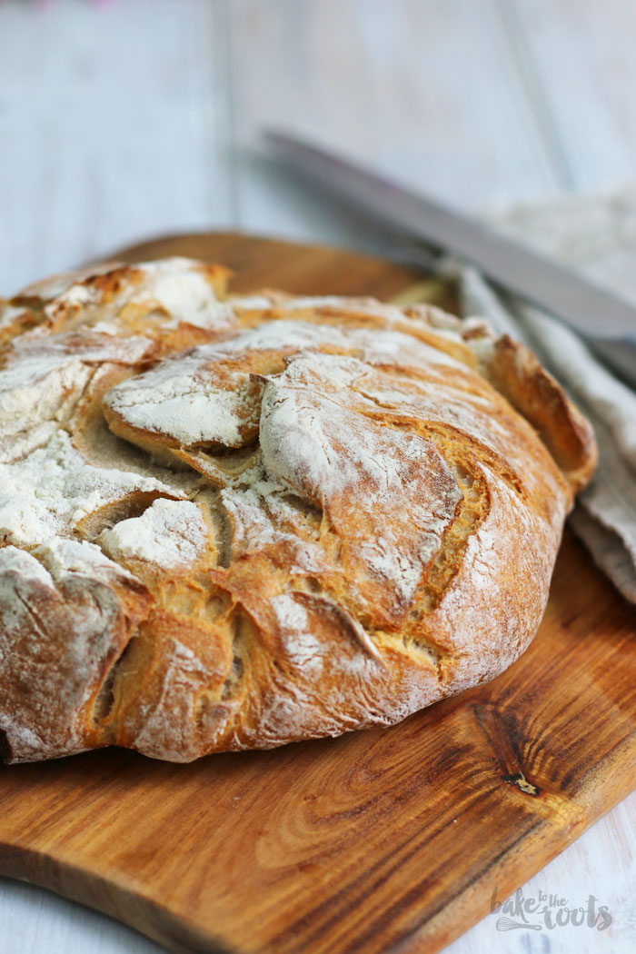 No Knead Bread   Bake to the roots