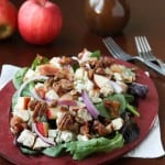 A Fall Inspired Apple Chicken Salad by Amanda of The Taste Tester