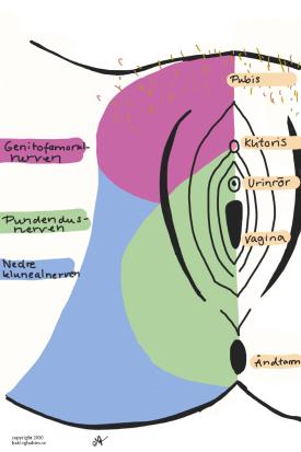 ont i urinröret efter förlossning