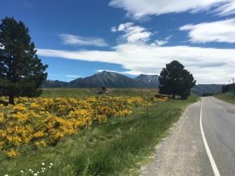 Drive to Arthurs Pass