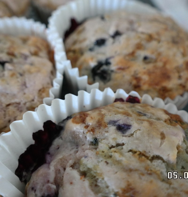 low-fat blueberry muffin