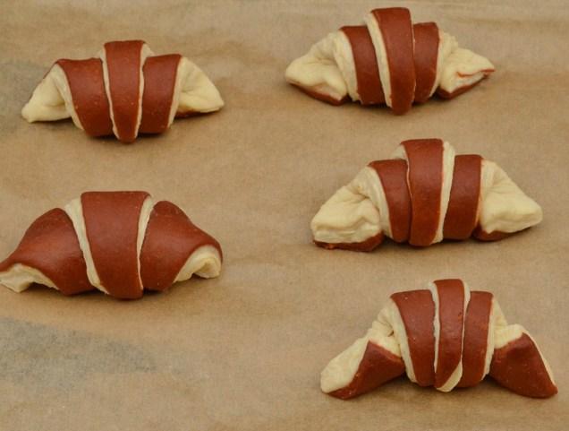 small bi-coloured croissants ready to prove