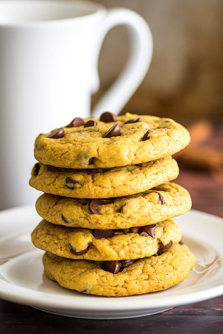 Stack of small-batch pumpkin cookies with chocolate chips on a plate.