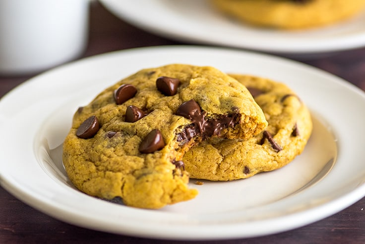 Pumpkin cookies with chocolate chips on a white plate.