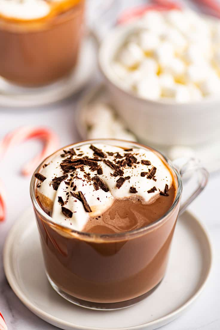 Cup of hot chocolate with whipped cream and chocolate shavings.
