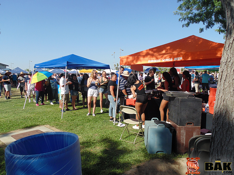 wing fest 3 pic 4