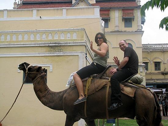 1.1306697033.camel-ride