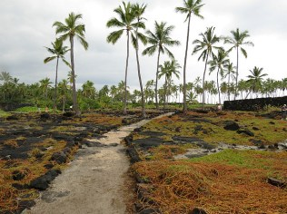 12.1419326679.4-pu-uhonua-o-honaunau-national-historic-park