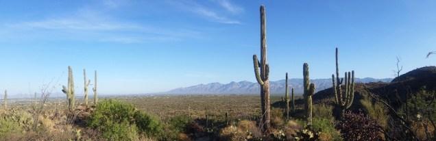 18.1492963147.more-desert-scenery