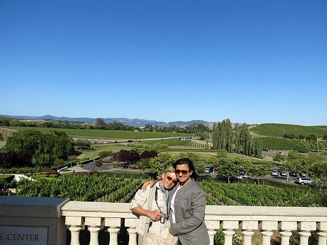 8.1368794859.domain-carneros-winery