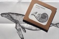 Booklet mit NOO, dem Wal