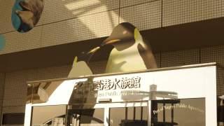 行ってみたら凄かった!名古屋港水族館。