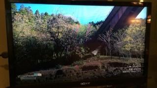 ChromecastとGoogleフォトでテレビを大画面フォトフレームに!