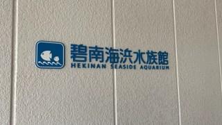 碧南海浜水族館で感じた自らのポジションを決めること。
