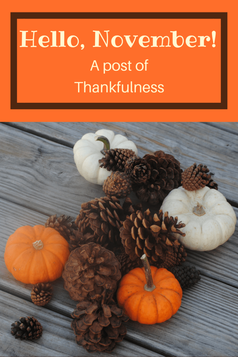Hello, November! A post of Thankfulness.