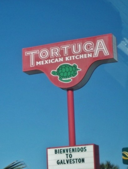 Galveston in January Tortuga