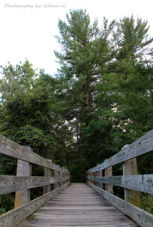 Pine Grove Furnace State Park Landscape and Nature Photography