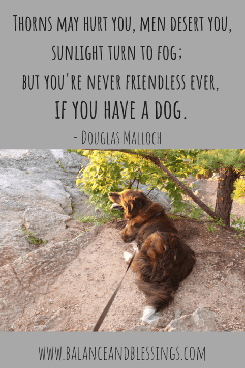 dog quote - Landscape and Nature Photography