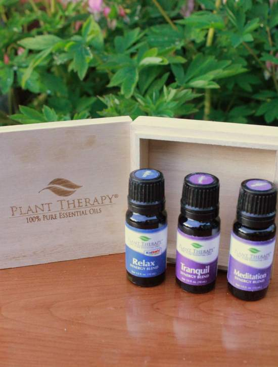 win a free massage plant therapy