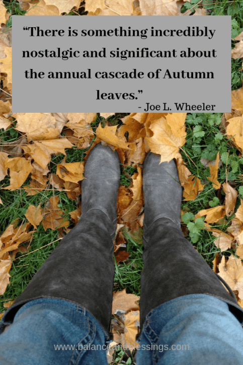 falling leaves quote
