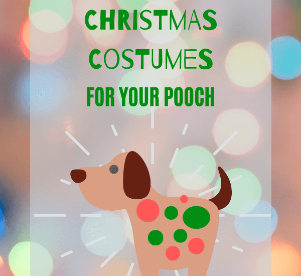 light up christmas costumes for your pooch