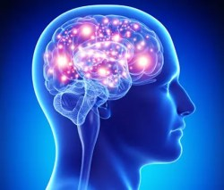 Human-brains-is-too-operative-during-the-night
