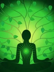 Why following your heart is easier said than done: A picture of the heart chakra