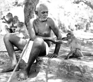 Ramana Maharshi is shown feeding monkeys.