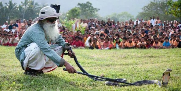 An image shows the great Hindu mystic Jaggi Vasudev, who's also known as Sadhguru, calmly handling a cobra snake as a crowd looks on.
