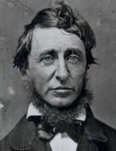 A headshot image of Henry David Thoreau, who along with other famous naturalists illuminated the wisdom that can be found in nature, is pictured.